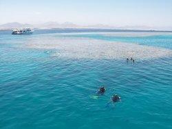 Aqua Nabq Dive Center