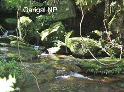 Garigal National Park