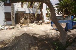 Building work in June 09