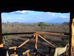 stellar view from our tent (zebra, buffalo, warthogs, baboons, giraffe)