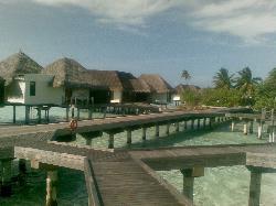 water bangalows