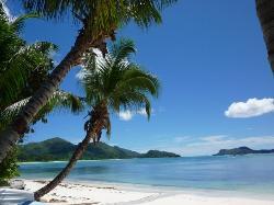 Paradise, Praslin  Seychelles 2009 (20192193)