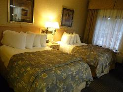 Our suite had 2-double beds. Pillows very plush!  Incredible sleep!