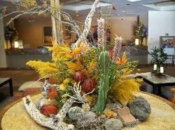 Catus arrangement in lobby.