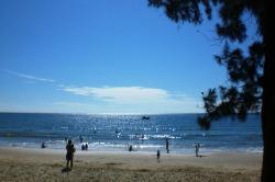 Biển Phan Thiết (20247606)
