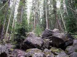 Lost Man Trail