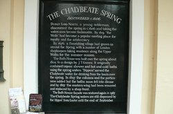 The Chalybeate Spring