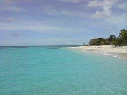 Buck Island Cove