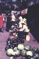 Kaukasus 1981