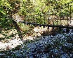 Hiking from Beatenberg to Interlaken (20787468)