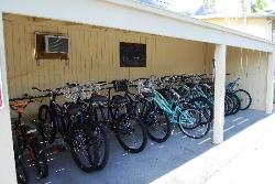 Bicycles that are available for guest