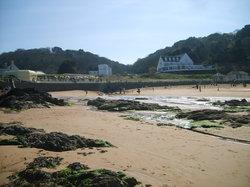 Die Küste von Jersey (20862584)