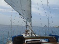Cozumel Boat Trips