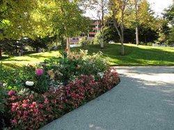 Town Square Municipal Park