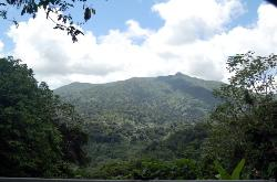 ‪The El Yunque Rain Forest‬