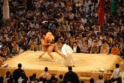 Sumo! My money's on the fat guy. Nagoya, Japan (21068778)