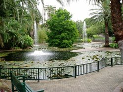 市区植物园