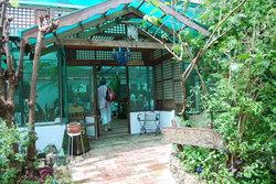 Sonya's Secret Garden