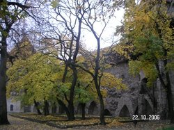 Danish King's Garden