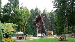 the Bridge at the Wild Play Zip Line and Bungee Jump in Nanaimo