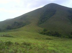 Brahmagiri Hill