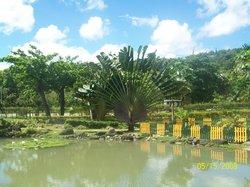 Turtle River Park