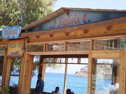 Gorgona Taverna