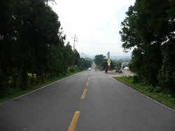 Mysterious Road (Dokkaebi Road)