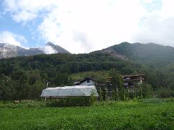 View of the tourist farm behind the tomato house.