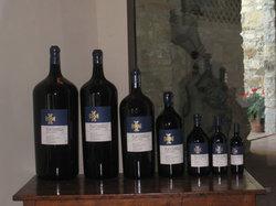 Fontodi Winery