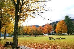 Enjoy a picnic outside
