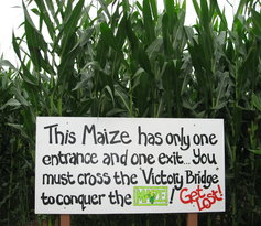 The Maize at The Pumpkin Patch