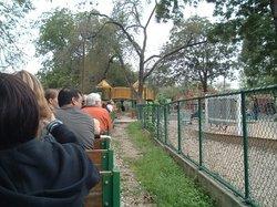 Zilker Playground