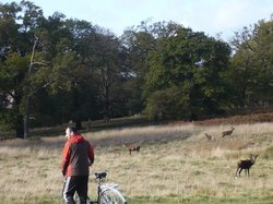 Richmond Park Golf Courses