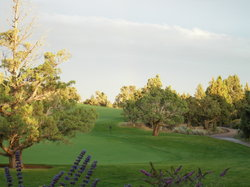 Pronghorn Golf Club