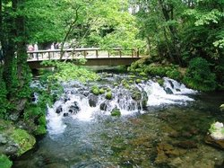 Kyogoku Spring Water Village