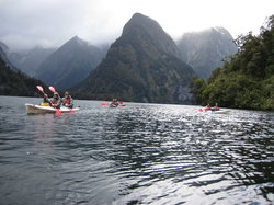 Fiordland Adventure - Day Trips