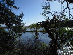 Witty's Lagoon Regional Park