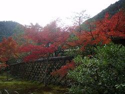 Koetsuji Temple