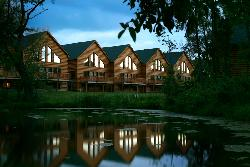 Grizzly Jack's Grand Bear Resort