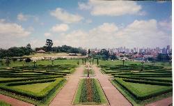 j.botanico curitiba (22846555)