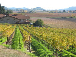 Napa Valley Wine Country Tours