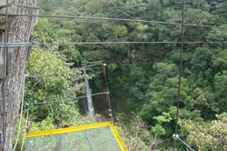 Rincon de la Vieja Mountain Lodge Canopy Tour