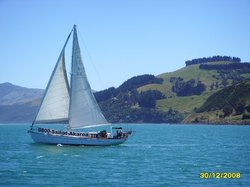 ‪Akaroa Sailing Cruises‬