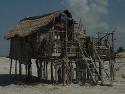 Algodoal Island