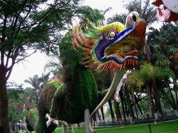 Jimei Turtle Garden