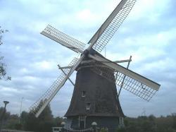 Windmill in Haarlem (23128324)