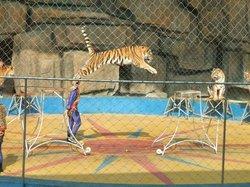 Nanning Zoo