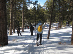 Taos Snowshoe Adventures