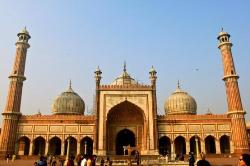 Jami Masjid (Delhi) (23345495)